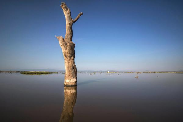 Lake Beseka, Fentale, Ethiopia