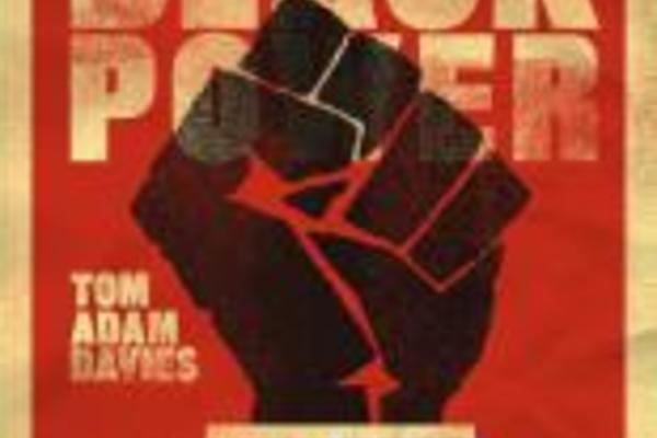 mainstreaming black power
