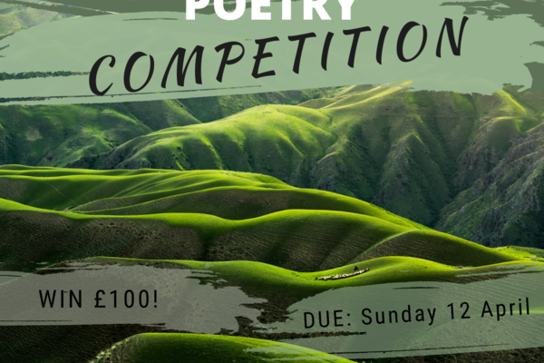 poetry competition insta