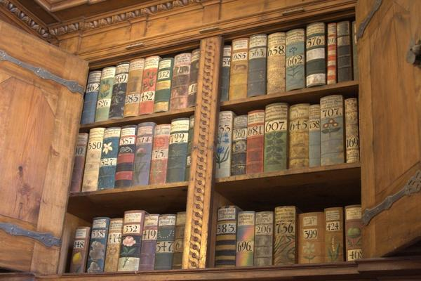 Bookcase with old books. Apart from the book numbers, which are written in calligraphy, the spines are decorated flowers.