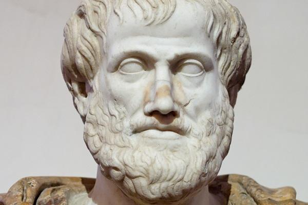 A marble bust of Aristotle via Wikimedia Commons