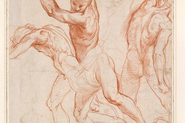 raphael and eloquence in drawing