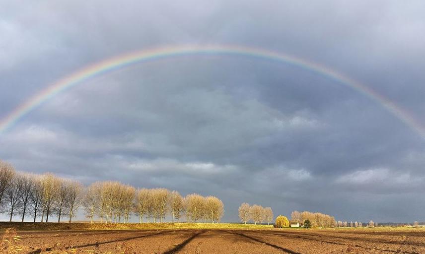 rainbow over a plowed field