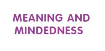 meaning and mindedness