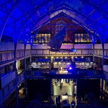 Pitt Rivers Museum Late Night, Illuminating Movement